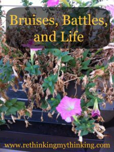 bruises battles